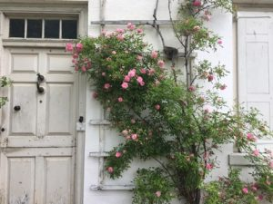 Wyck House front door and pink flowers