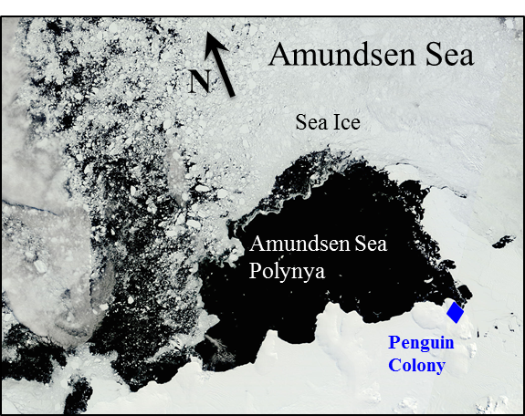 Map of Amundsen Sea